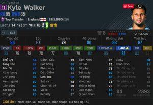 Walker tt fo4-min